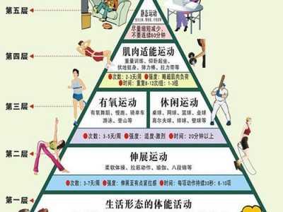 """运动金字塔的定义 运动也有""""金字塔"""""""