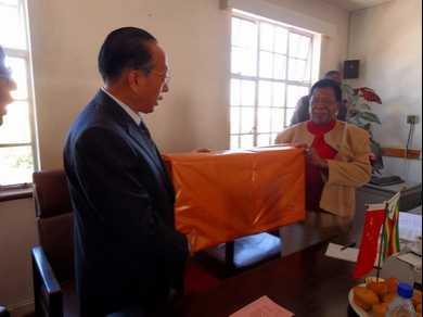 喻林祥 全国人大华侨委员会代表团会见津巴布韦参议长马宗圭