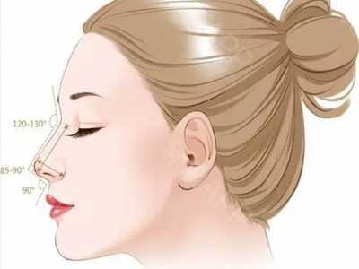 鼻子的大小 一个好鼻子的标准